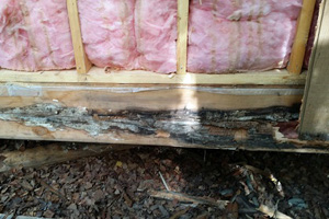 Siding and Insulation Repair