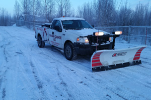 Palmer Snow Plowing